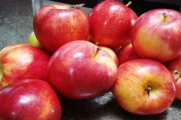 Polska zabiega, by USA otworzyły swój rynek dla polskich jabłek