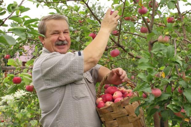Będą rekompensaty za owoce