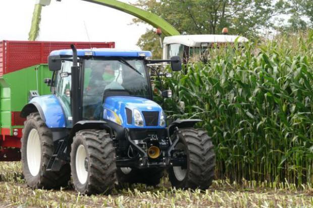 Zbiory kukurydzy kiszonkowej trwają