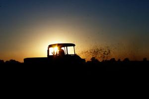 Liczba gospodarstw ekologicznych dynamicznie rośnie