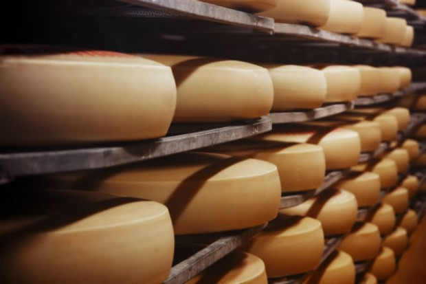 KE zawiesza system wsparcia dla producentów sera dotkniętych embargiem