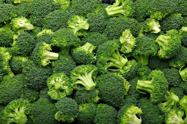Czy embargo poważnie dotknie także hodowców brokułów w Polsce?