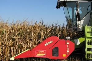 Kukurydza trochę odbiła cenowo