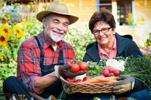 Rada poprawi sytuację rolnictwa ekologicznego i sprzedaży bezpośredniej?