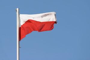 Ipsos: Na wsi wygrywa PiS, a wśród rolników PSL