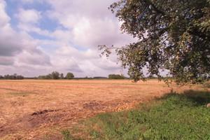 Czy warto przystąpić do systemu dla małych gospodarstw? (cz. 2)