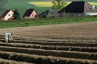 Wzrosły ceny gruntów rolnych w III kw. 2014