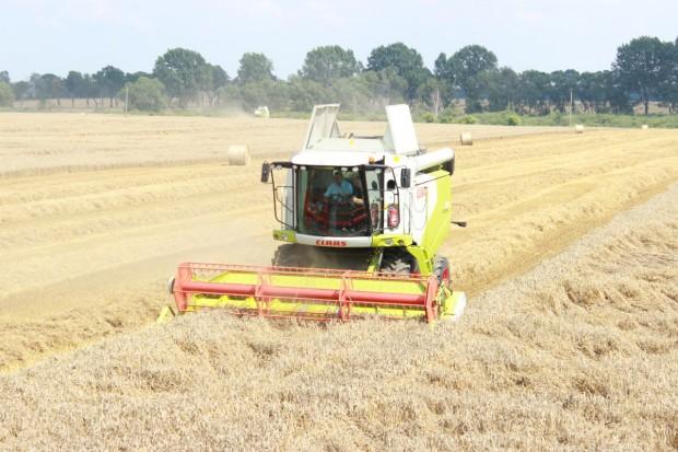 Ceny zbóż rosną