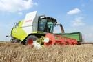 Cena pszenicy na Matif najwyższa od ponad 3 miesięcy