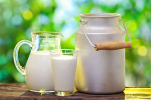 ARR: skup mleka nadal wysoki, kary za nadprodukcję nie do uniknięcia