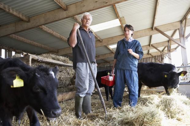 Sejm odrzucił poprawki Senatu do ustawy o ewidencji producentów rolnych