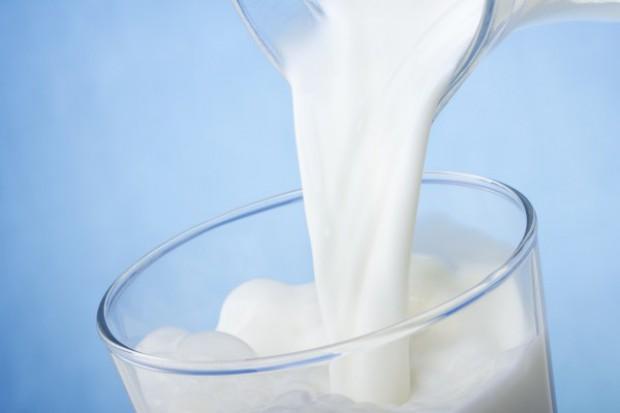 Krowie mleko, ale nie z wymienia