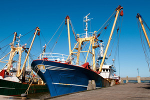 Sejm: projekt ustawy o rybołówstwie - do dalszych prac w komisji rolnictwa