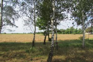 Działanie rolnośrodowiskowo-klimatyczne w PROW 2014-2020