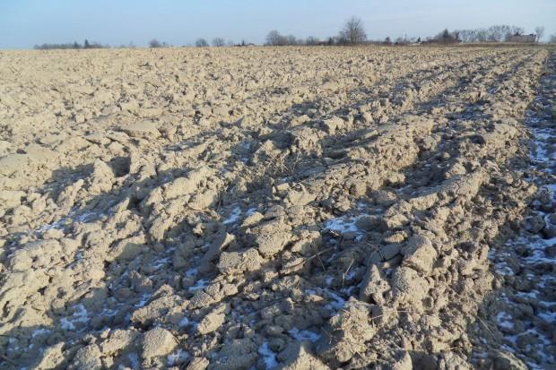 Kiedy zmienia się pH gleby?
