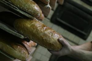 FAO: żywność najtańsza od czterech lat