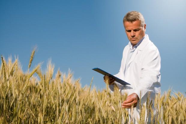 Egzaminy dla przyszłych inspektorów rolnictwa ekologicznego