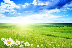 Przyjęto projekt ustawy o zmianach w zagospodarowaniu wspólnot gruntowych