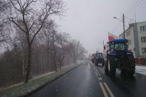 Od czwartku 19 lutego w Warszawie zielone miasteczko