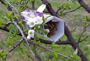 Sumi Agro rozda 2500 domków z gniazdami murarki ogrodowej