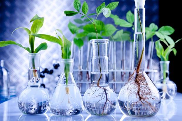 Otwarto Centrum Biotechnologiczne DANLAB