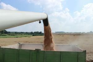 Sawicki: Celem jest zwiększenie dochodów rolników