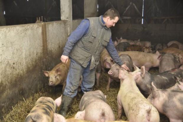 Prezydent podpisał ustawę o zwalczaniu chorób zakaźnych zwierząt