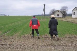 IUNG: Na razie pogoda sprzyja uprawom zbóż
