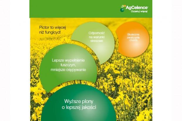 Maksymalizacja plonów rzepaku poprzez odpowiedni dobór ochrony fungicydowej