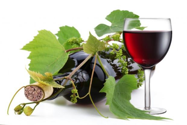 Copa-Cogeca zadowolone z nowego systemu zezwoleń na nasadzanie winorośli