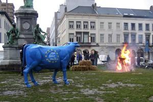 Pożegnanie kwot mlecznych w Brukseli