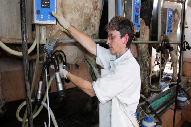 Nieznaczny wzrost cen skupu mleka w Polsce