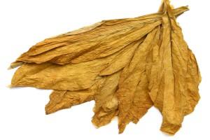 Eksporterzy tytoniu zagrożeni?