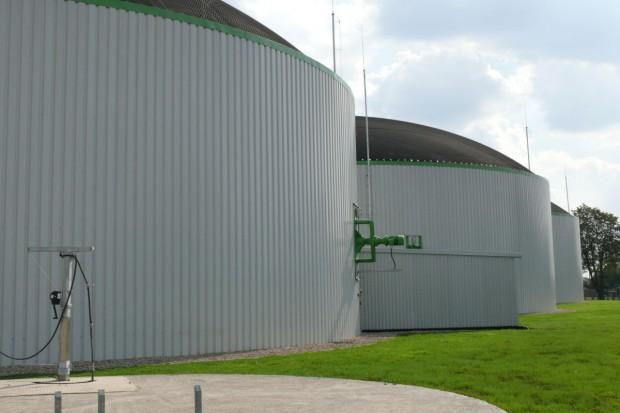 Czy biogazownia może się opłacać?