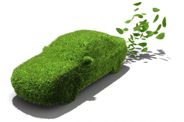 Copa-Cogeca o biopaliwach i pośrednich zmianach w użytkowaniu gruntów