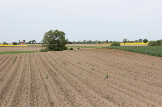 Sprzedaż ziemi za pośrednictwem powiatu