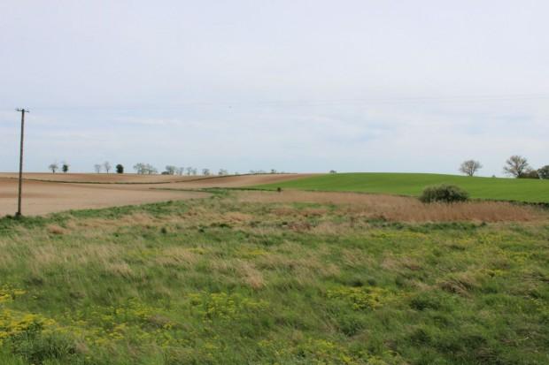 MSW: W 2014 cudzoziemcy nabyli 1029 ha
