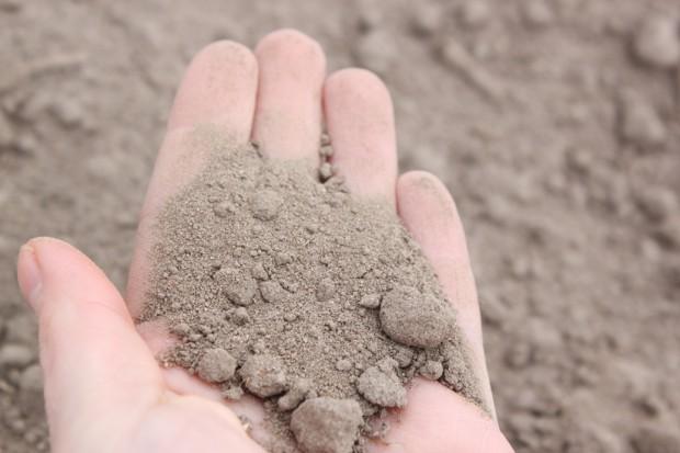 Pomimo przelotnych opadów ciągle brakuje wilgoci w glebie