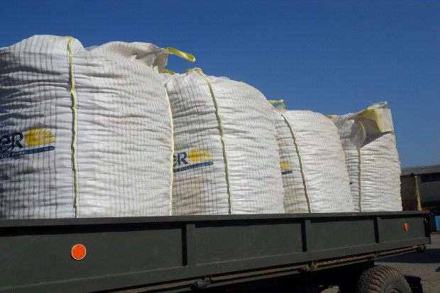 Dobre wyniki dla eksportu unijnego zbóż