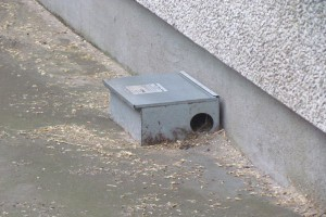Monitorowanie obiektu pozwoli kontrolować populację gryzoni