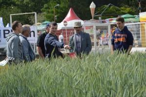 Rolniczy weekend w Sielinku
