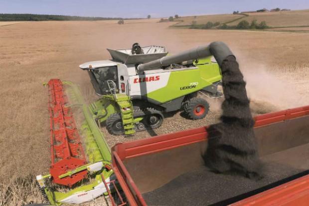 Burzliwy miesiąc notowań zbóż