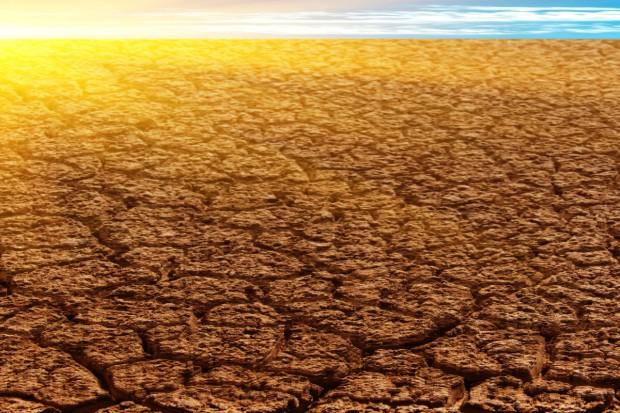 Ograniczone możliwości ponownego wykorzystania ziem rolniczych w Kazachstanie