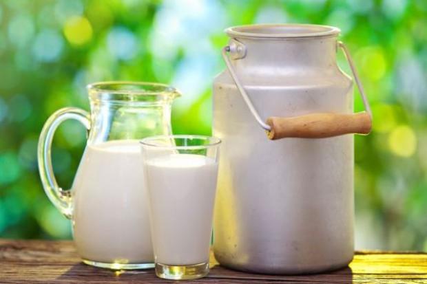 Mleko w skupach nadal tanieje