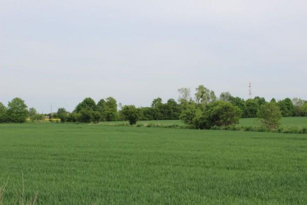Komisje pracują nad ustawą o sprzedaży ziemi