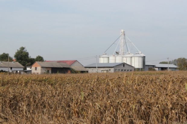 Ponad 520 mln zł trafiło na wieś z regionalnej puli PROW