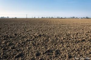 Sejm uchwalił ustawę o ustroju rolnym