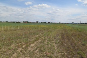 Gospodarstwo preferowane: dwie średnie wojewódzkie, do 100 ha