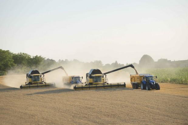 Zbiór zbóż - jak ustawić kombajn