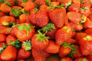 Kończy się sezon truskawkowy